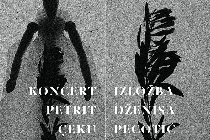 Koncert Petrita Çekua i Izložba Dženise Pecotić u Orebiću