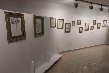 """Izložba crteža """"El Camino-Putovanje"""" u Hrvatskom Domu Viganj Kuvenat"""