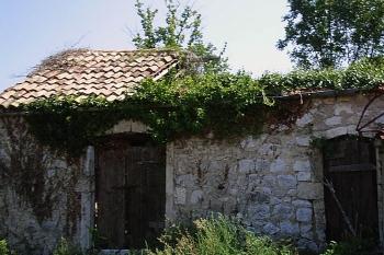 Prečesto vđena slika ruševine na Pelješkoj župi (slučajan odabir)