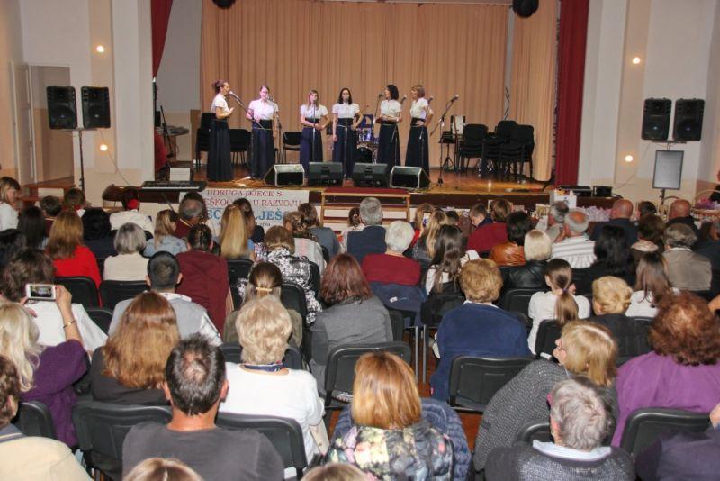 Ilustracija: Humanitarni koncert udruge 'Djeca Pelješca'