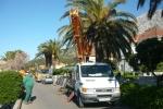 Uređenje palmi u Orebiću