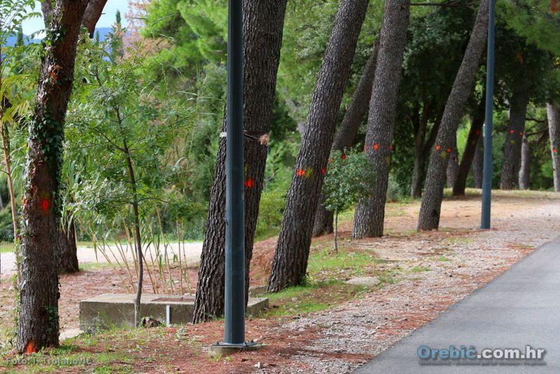 Označena stabla uz cestu