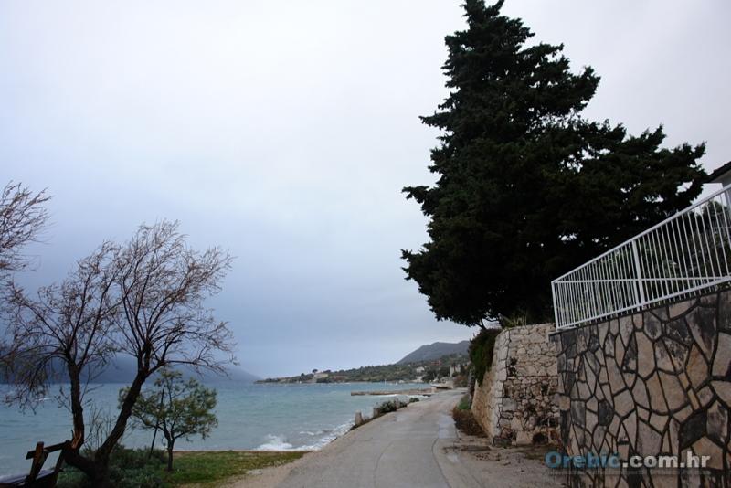 'problematična' stabla uz cestu u Kućištu