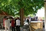 Misa na središnjem trgu sela Stanković