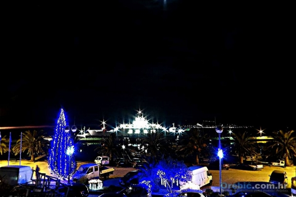 Božićni bor u portu